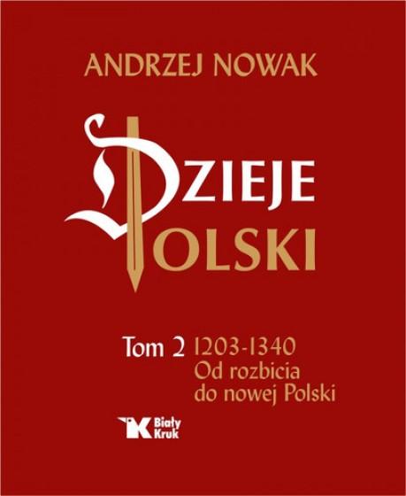 Dzieje Polski. Tom II