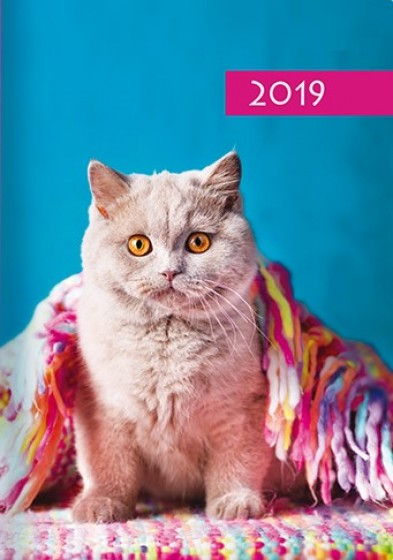 Kalendarz B7 Kot