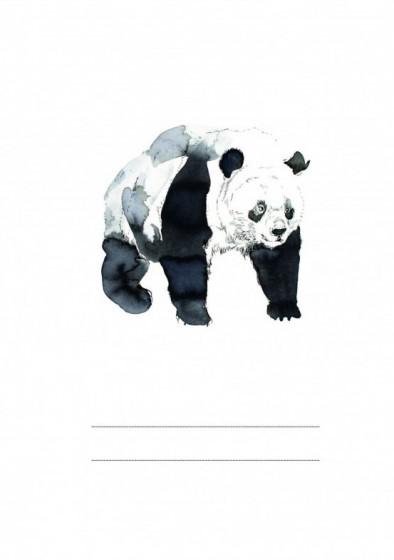 Panda Petronela - zeszyt