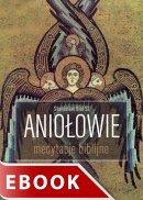 Aniołowie - Medytacje biblijne, Stanisław Biel SJ