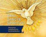 Veni, Sancte Spiritus! - Pamiątka sakramentu bierzmowania, Urszula Haśkiewicz