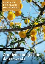 Zranienia miejscem dojrzewania / ZFD Lato 72/2016 - Zeszyty Formacji Duchowej Lato 72/2016, Amedeo Cencini FdCC