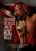 Przypatrz się, duszo, jak cię Bóg miłuje - Rozważania drogi krzyżowej i kazania pasyjne, ks. Teodor Szarwark