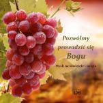 Pozwólmy prowadzić się Bogu - Myśli na niedziele i święta, Piotr Koźlak CSsR