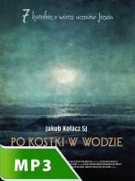 Po kostki w wodzie - 7 katechez o wierze uczniów Jezusa, Jakub Kołacz SJ