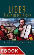 Lider. Śladami Mojżesza - Medytacje biblijne, Stanisław Biel SJ
