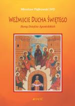 Weźmijcie Ducha Świętego - Ikony Dziejów Apostolskich, Mirosław Piątkowski SVD
