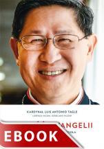 Radość Ewangelii - Rozmowy o odnowie Kościoła, kard. Luis Antonio G. Tagle, Lorenzo Fazzini, Gerolamo Fazzini