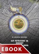 Czy potrzebne są dowody na istnienie Boga - , ks. Krzysztof Śnieżyński