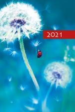 Terminarz B7 Kolorowy - Dmuchawiec - Dzień po dniu 2021 roku,